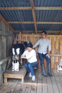 Agr- Belinda Goat Milk 250x374
