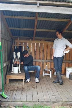 Agr- Nico Goat Milk 250x374