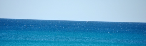 Cable Beach Whales1 500x160