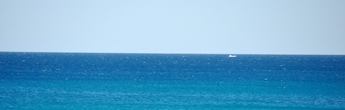 Cable Beach Whales2 500x160