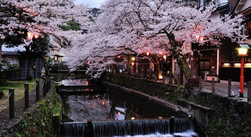 kinosaki-onsen-cherry-blossom-2