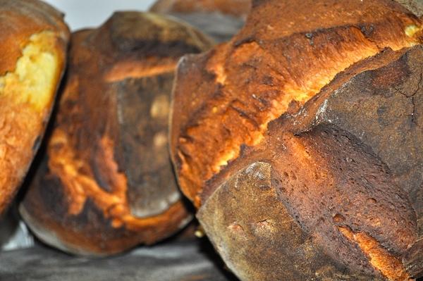 Altamura Bread 600x400